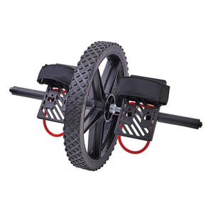 Professional Gym Fitness Equipment Power Wheel EW-009 -Vigor