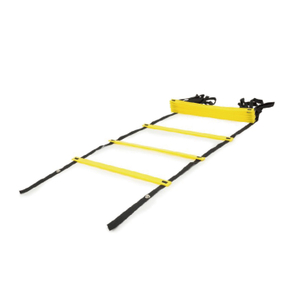 Hot Sale Sports Plastic Ladder LD004 -Vigor