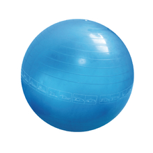 Transparency Gym Ball